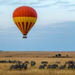 A Luxury Honeymoon on Safari