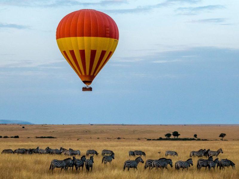 A Luxury Honeymoon on Safari